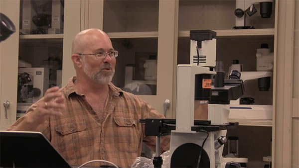 U of Florida program offers hands-on learning experience