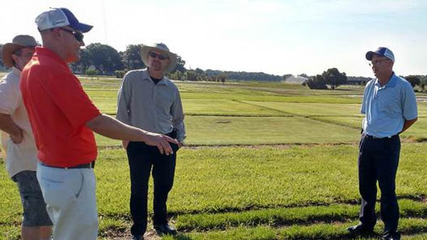 University of Florida researchers making it easier to pick the right pesticide