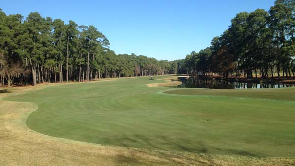 Texas course embraces trees rather than shuns them