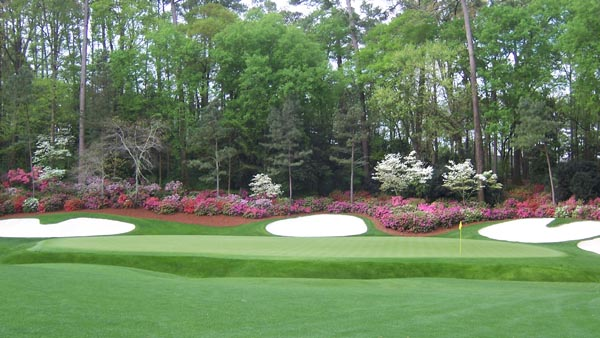 Could it be, a Masters without azaleas?