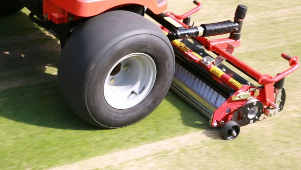 Brush then roll to work in topdressing