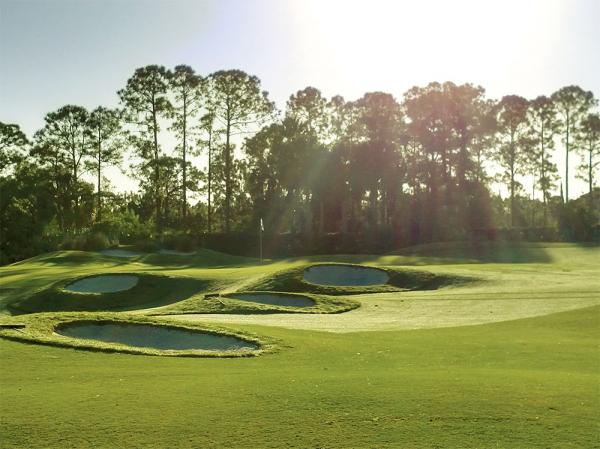 The Ryder, Dye and Wanamaker courses at PGA Golf Club all have received a makeover since Dick Gray arrived in 2013.