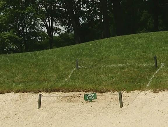 Part of a bunker on the fourth hole of Wildwood Golf Club near Pittsburgh is out of play thanks to a mother snapping turtle who laid her eggs in the hazard.