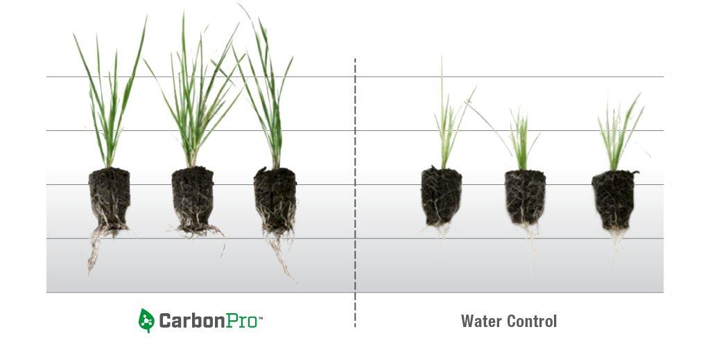 Lesco adds granular carbon product: CarbonPro-G